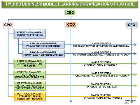 """Portfolios of Programmes in the """"Hybrid"""" Business Model Organizational Structure (Adapted from Steyn 2010, 2012, and 2013)."""