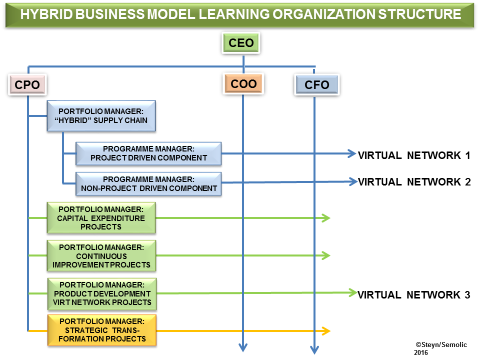 Hybrid Business Model Learning Organization Structure